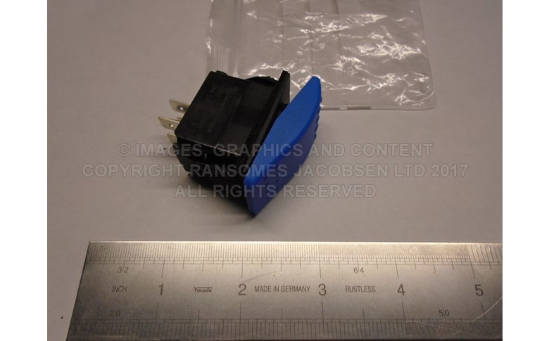 4317826 MOMENTARY SWITCH (BLUE) - CRUISE CONTROL