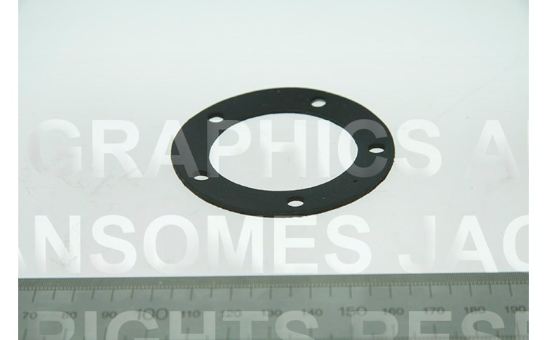 002250010 SEALING WASHER FUEL TANK SEAL